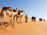 Tunis i safari kroz pustinju